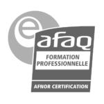 e-AFAQ_contour_gris